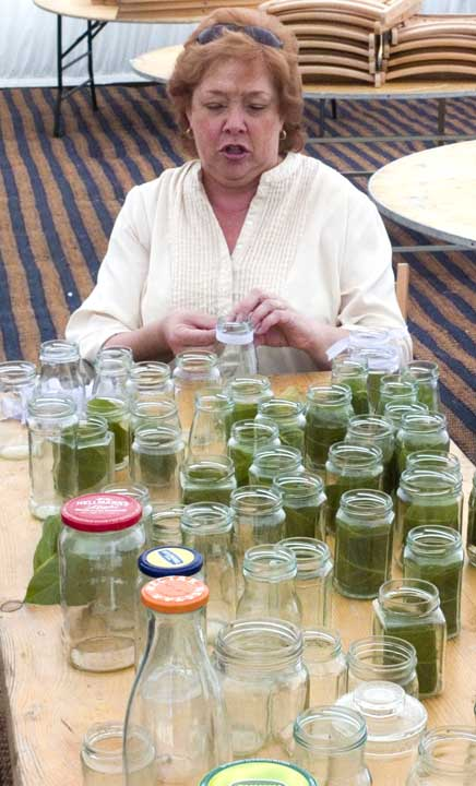 Sandi leafing the jars