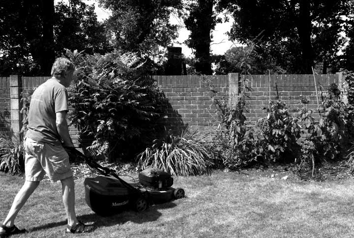 Bruce mowing the lawn